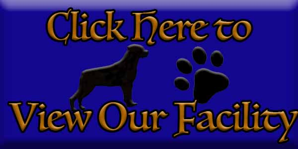 Click Here to See Ballardhaus Rottweilers Kennel Facility